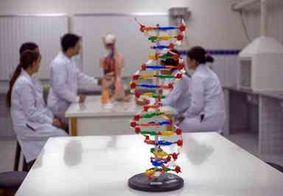 Criação de cursos de medicina no Brasil é suspensa por 5 anos