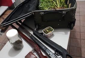 Polícia apreende armas, sementes e pés de maconha na Paraíba