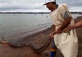 Sucuri gigante assusta pescadores e é devolvida para o rio