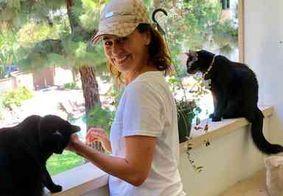 Daniela Escobar é atacada na internet após relatar mordida de gato