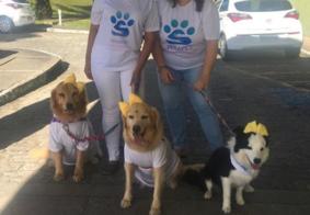 Terapet: projeto recruta voluntários e animais para visita a hospitais na PB