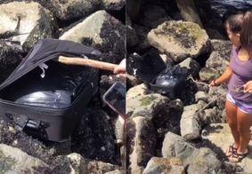Enquanto gravavam Tik Tok, jovens encontram restos mortais em mala; veja