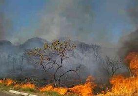 Aumentam em 52% queimadas em  áreas florestais e de lavoura