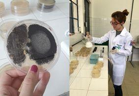 Estudo detecta bactérias e fungos em massa para tapioca vendida em João Pessoa