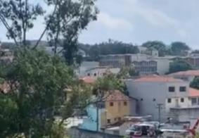 Cães matam criança dentro de terreno em São Paulo