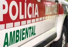 Casal é preso com drogas na Comunidade Santa Clara, em João Pessoa