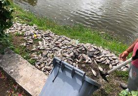 Peixes mortos foram encontrados no Parque da Lagoa