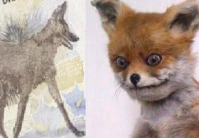 'O lobo guará ficou cinza': memes sobre a nota de R$ 200 repercutem nas redes sociais