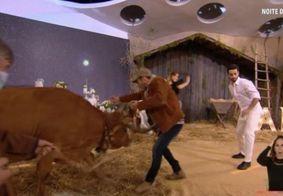 Vaca provoca confusão após escapar de cenário durante programa português; confira