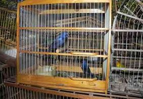 Transita em julgado condenação de paraibano considerado maior traficante de animais do Brasil