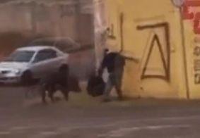 Motoboy foi atacado pelo animal