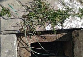 Quadra de Manaíra tem cabos furtados; prejuízos chegam a R$ 120 mil
