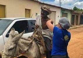 Idoso montado em cavalo é vacinado contra Covid-19, no Sertão da PB