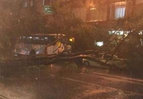 Estágio de crise: Prefeitura do Rio alerta que pessoas fiquem dentro de casa devido à chuva