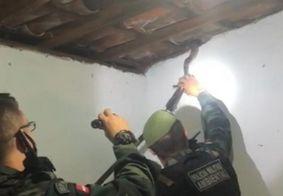 PM resgata cobra que estava escondida no telhado de uma casa em João Pessoa